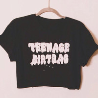 Teenage Dirtbag Crop top