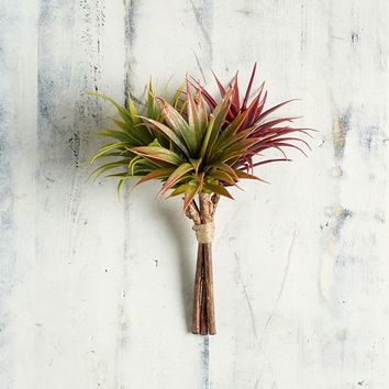 Faux Colored Tillandsia Pick - Multi