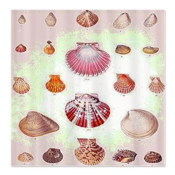 Vintage Seashell Shower Curtain> Coastal, Vintage and Urban Chic Shower Curtains> Rebecca Korpita Coastal Design