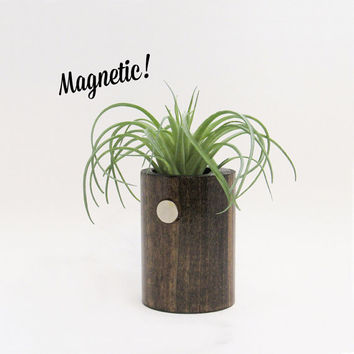 Magnetic Air Planter, Wood Planter, Air Plant Holder, Modern Planter, Unique Planter, Rustic Planter, Indoor Planter, Air Plants
