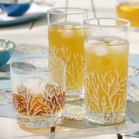 Coral Barware, Set of 4