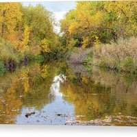 Fly Fishing Stream Reflections Canvas Print