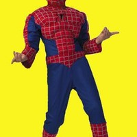Kids Spiderman 2 Halloween Costume