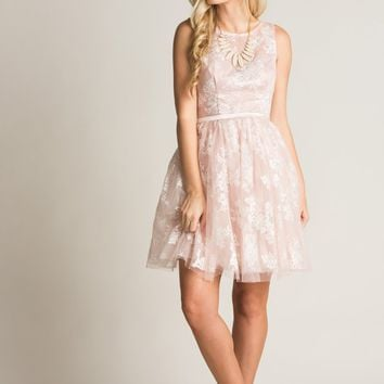Jennie Blush Lace Mini Dress