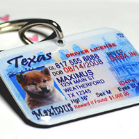 Dog Tag Cat Pet Tag Pet ID Tag Texas Driver License by by ID4Pet