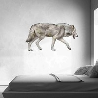 Grey Wolf Wall Stickers