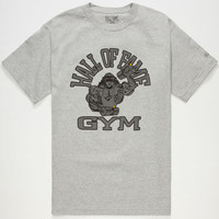 Hall Of Fame Gym Mens Reflective T-Shirt Heather Grey  In Sizes