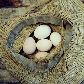 "Rustic Country Photograph - farmhouse - rustic kitchen wall art print - brown still life photograph - country life ""Eggs in a Hat"""
