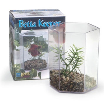 Lee's Betta Keeper With Lid, Gravel And Plant - Small