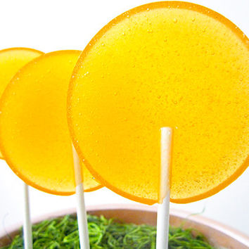 Apple Ginger Champagne Spritzer Gourmet Lollipops - Pick Your Size - Luxe Lollies - Wedding Favors - Party Favors