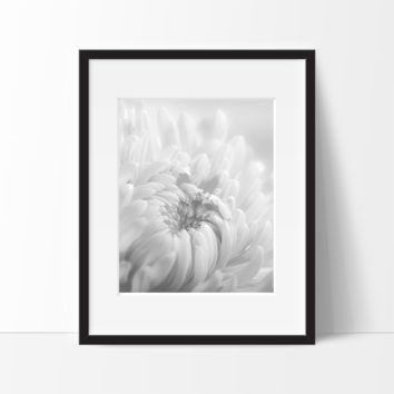 Nature Art, Bird and Flower Poster Print, Wall Decor Ideas, Unframed