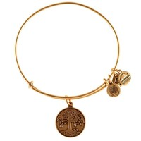 Tree of Life Charm Bracelet | Alex and Ani