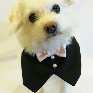 RockinDogs Frontal Dog Tuxedo with Bow Tie Collar Custom--Match your Wedding Colors