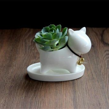 Lucky Bonsai Ceramic Dog, Succulent Planter Pot