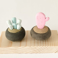 Two Miniature Potted Plant on wood base succulent cactus exotic blue pink polymer clay home decor clay botany fantasy