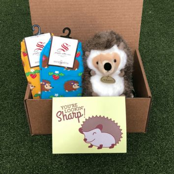 Hedgehog Care Package