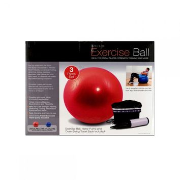 Pilates Exercise Ball And Pump OB350