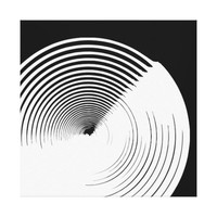 Abstract Black & White Ink Art Canvas Wall Decor