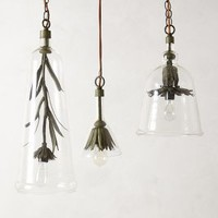Robert Ogden Iron Petals Pendant in Clear Size: