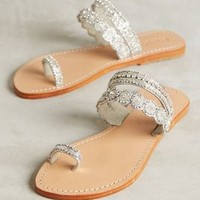 Mystique Jeweled Toe-Loop Sandals in Silver Size: