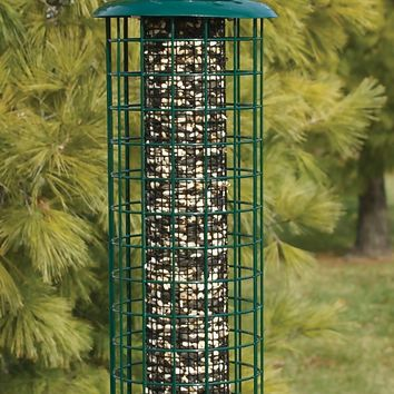 Audubon™ NACAGE Squirrel-Resistant Caged Screen Bird Feeder, 16""