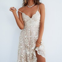 **Breathtaking 2.0 Dress (Gold/Beige)