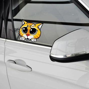 Funny But Sad Cat With Anime Eyes Auto Decal Stickers
