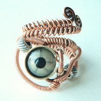 steampunk wire rings taxidermy eye reptile steampunk by keoops8