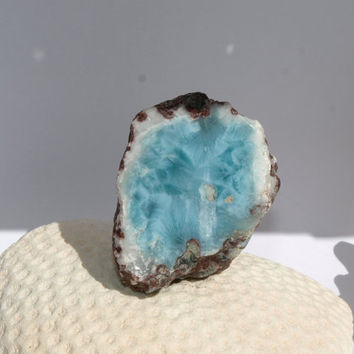 Small Dominican Larimar Turquoise Azure AAA polished raw rock blue lapidary rough display collector pectolite dolphin stone 59g 295ct