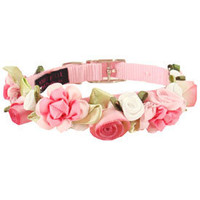 Fancy Pet Collars- Cute Dog Collars, Trendy & Unique Dog Collars, Small Cat Collars, Puppy Collar