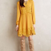 Maeve Lace Interlude Dress in Maize Size: