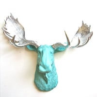 Faux Taxidermy Moose Head Wall Hanging: Max the Moose in seafoam blue with silver antlers