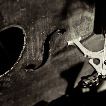 It's in the Strings Fine Art Photography Cello Music Notes Instruments Musical Photo Print Classical Cello Wall Decor Music Lover Gift Idea