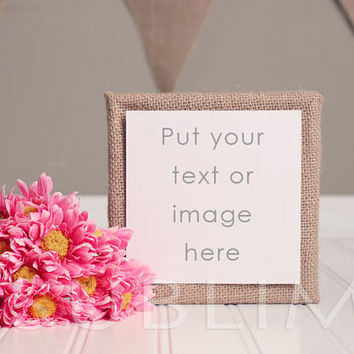 Styled Stock Photography / Instant Download / High Resolution JPEG Digital Image / StockStyle-142