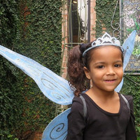 Periwinkle Fairy Wings - Blue Wings - Fairy Party -  Princess Party - Fairy Princess - Disney Fairy - Toddler Fairy Wings - Adult Wings