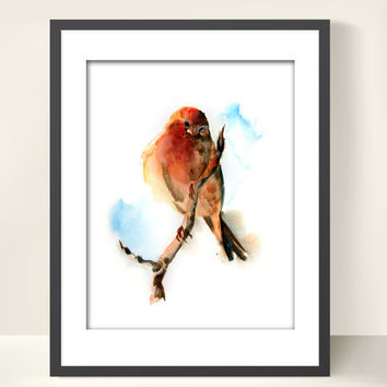 Watercolor Painting Art Print, Bird on Branch, Watercolor Art Bird Painting Art, Illustration, Bird Art