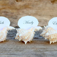 10 Pink Murex Sea Shell Beach Wedding Place Card Holders - Natural Tan Eco Pink White Wedding  Reception Nautical Ocean Table Decorations