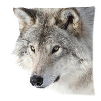 Grey Timber Wolf Pillow