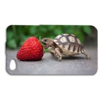 Baby Turtle Eating Strawberry Cute Funny Case iPhone Apple Cool Fun Phone Cover