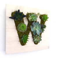 CUSTOM COLOR: Alphabet Initial Succulent + Cactus Vertical Garden / Living Wall / Wall Planter