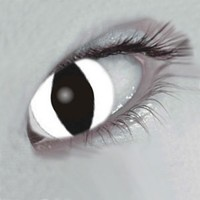 Mesmereyez White Cat Coloured Contacts (Comfort)