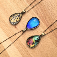 Real butterfly teardrop necklace Monarch butterfly wing pendant Blue Morpho Statement Necklace Sunset moth jewelry Large teardrop crystal