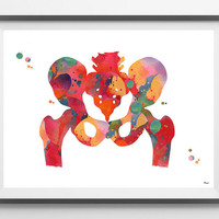 Human pelvis watercolor print pelvis and femur bones poster orthopedic art skeletal system hip anatomy art poster medical art wall decor