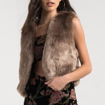 AKIRA Sleeveless Faux Fur Vest in Black, Stone, Fox