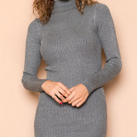 Grey Turtleneck Craves Dress