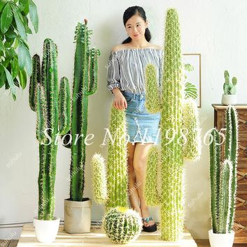 Long Cactus Seeds 100 Pcs Green Huge Rare Cactus Succulent Plant For Home Garden Decoration Purify The Air And Prevent Radiation