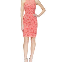 Women's Sleeveless Lace Halter Cocktail Dress - Nicole Miller - Coral