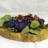 Wood Slice Dry Flower Arrangement