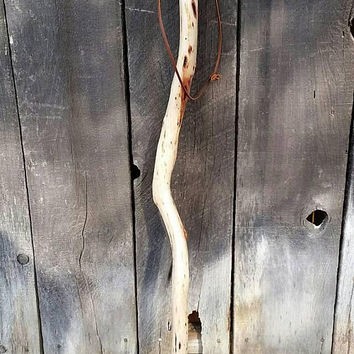 Manzanita Tree Walking Stick/Compass Hiking Trail Stick/Hand Carved