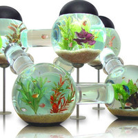 Awesome Aquariums: 5 Cool Modern Fish Tank Designs | Designs & Ideas on Dornob